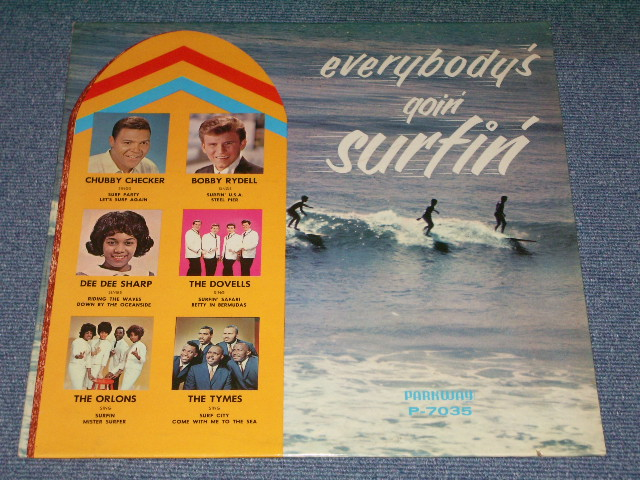 Various Everybodys Goin Surfin