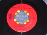 "CONNIE STEVENS - TOO YOUNG TO GO STEADY ( SMALL LOGO ) / 1960 US ORIGINAL 7"" SINGLE"