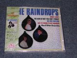THE RAINDROPS - WHAT A GUY / 1994 ?? SEALED CD