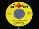 "THE SHANGRI-LAS - I CAN NEVER GO HOME ANYMORE / 1965 US ORIGINAL 7"" Single"
