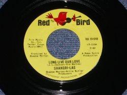 """画像1: THE SHANGRI-LAS - LONG LIVE OUR LOVE / 1966 US ORIGINAL 7"""" Single"""