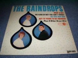 画像1: THE RAINDROPS - THE RAINDROPS / 1963 US MONO LP