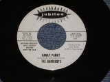 "THE RAINDROPS - HANKY PANKY ( PROMO ONLY SAME FLIP ) / 1965? US ORIGINAL WHITE LABEL PROMO 7"" SINGLE"