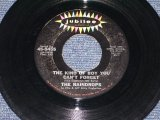 "THE RAINDROPS - THE KIND OF BOY YOU CAN'T FOR GET ( Ex+/Ex+ ) / 1963 US ORIGINAL 7"" SINGLE"
