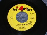 "JEFF BARRY - I'LL STILL LOVE YOU ( Ex+/Ex+ )/ 1965 US Original 7"" Single"