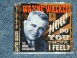WAYNE WALKER - HOW DO YOU THINK I FEEL? THE SINGER & HIS SONGS / 2009 SPAIN ORIGINAL Brand New CD