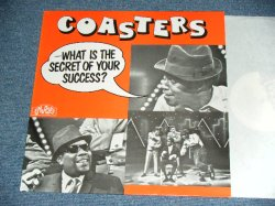 画像1: THE COASTERS - WHAT IS THE SECRET OF YOUR SUCCESS? / 1980 SWEDEN Brand New Dead Stock LP