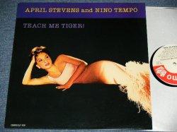 画像1: APRIL STEVENS & NINO TEMPO - TEACH ME TIGER  / 1991 US AMERICA  REISSUE Used LP