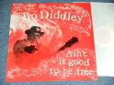 BO DIDDLEY -  AIN'T IT GOOD TO BE FREE / 1986  FRANCE FRENCH ORIGINAL Brand New LP  found Dead Stock