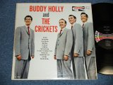 BUDDY HOLLY and THE CRICKETS - BUDDY HOLLY and THE CRICKETS (Ex+/Ex+)  / 1963 US ORIGINAL on CORAL LABEL MONO  Used LP