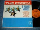 THE ESSEX - A WALKIN' MIRACLE ( Ex+/Ex++ Looks:Ex ) / 1963 US AMERICA ORIGINAL MONO Used LP