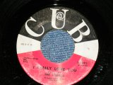 "THE STEREOS - I REALY LOVE YOU : PLEASE COME BACK TO ME ( Ex+++ Looks:Ex/Ex- Looks:Ex- ) / 1961 US AMERICA ORIGINAL Used  7"" Single"