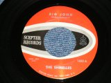 "THE SHIRELLES - BIG JOHN : TWENTY-ONE   ( Ex+++/Ex+++ ) / 1961 US AMERICA  Used 7"" SINGLE"