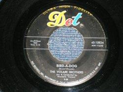 """画像1: The VOLARE BROTHERS - BIRD-A-DOG ( LIKE A The EVERLY BROTHERS """" BIRD DOG"""" ) : TOY GUITAR ( VG+++/VG+++ ) / 1958 US AMERICA ORIGINAL Used 7"""" SINGLE"""