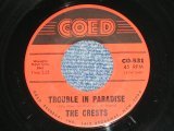 "THE CRESTS - TROUBLE IN PARADISE : ALWAYS YOU  ( Ex++/Ex++ ) / 1960 US AMERICA ORIGINAL 1st Press Label Used 7"" 45 Single"