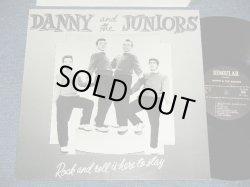 画像1: DANNY and The JUNIORS -  ROCK and ROLL IS HERE TO STAY  (16 TRACKS)  ( Ex+++/MINT- )  / 1980's EUROPE   Used LP