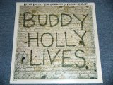 "BUDDY HOLLY - 20 GREATESAT GREATS : BUDDY HOLLY LIVE  ( SEALED ) / 1980's US America REISSUE  ""BRAND NEW SEALED""  LP"