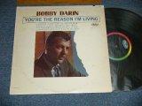 BOBBY DARIN - YOU'RE THE REASON I'M LIVING  ( Ex++/Ex, Ex+++) / 1963 US AMERICA ORIGINAL MONO Used LP