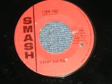 "CATHY And JOE (Girl & Boy Duo) - I SEE YOU : IT'S ALL OVER NOW (Ex+++/Ex+++ BB, STAMPOL )   / 1965 US AMERICA ORIGINAL Used 7"" Single"