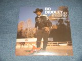 "BO DIDDLEY - IS A GUNSLINGER  (SEALED)  / US AMERICA REISSUE ""Brand New SEALED"" LP"