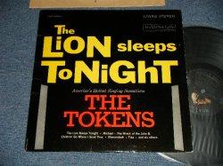画像1: THE TOKENS - THE LION SLEEPS TONIGHT ( Ex/Ex++ EDSP) / 1961 US AMERICA ORIGINAL STEREO Used LP
