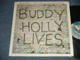 BUDDY HOLLY and THE CRICKETS - 20 GOLDEN GREATS :  BUDDY HOLLY LIVE  (Ex++/MINT-)   / 1978 US AMERICA ORIGINAL  Used LP