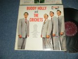 "BUDDY HOLLY and THE CRICKETS - BUDDY HOLLY and THE CRICKETS (Ex++/Ex++ Looks:Ex+++SWOBC, EDSP)  / 1963 US AMERICA ORIGINAL on CORAL ""MAROON LABEL"" MONO Used LP"