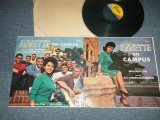 ANNETTE - ON CAMPUS (MINT-/MINT- EDSP)  / 1964 US AMERICA ORIGINAL MONO Used LP
