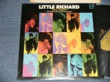 LITTLE RICHARD - WELL ALRIGHT (MINT-/Ex++ Looks:Ex, MINT-) / 1971 US AMERICA ORIGINAL Used LP