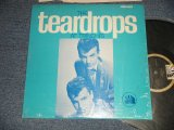 The TEARDROPS - AT TRINCHI'S (MINT/MINT-) / 1963 US AMERICA ORIGINAL STEREO Used LP