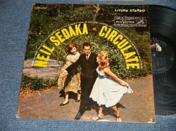 画像1: NEIL SEDAKA - CIRCULATE (Ex++/Ex++) / 1961 US AMERICA ORIGINAL STEREO Used LP