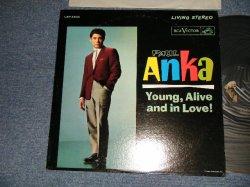 画像1: PAUL ANKA - YOUNG, ALIVE AND IN LOVE! (with PORTRAIT OF PAUL ANKA on BACK COVER STYLE) (Ex++/Ex+++) /1962 US AMERICA ORIGINAL 2nd Press Jacket  MONO Used LP