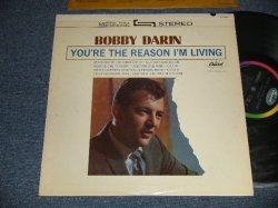 画像1: BOBBY DARIN - YOU'RE THE REASON I'M LIVING (Ex++/Ex+++) / 1963 US AMERICA ORIGINAL STEREO Used LP
