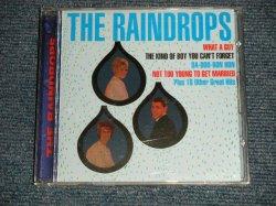 画像1: THE RAINDROPS - THE RAINDROPS (MINT/MINT : SEALED) / 1999 US AMERICA ORIGINAL Used CD
