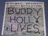 "BUDDY HOLLY/CRICKETS - IT DOESN'T MATTER ANYMORE ( Promo Only Same Flip : ST / ST ) / 1978 US Reissue 7"" Single With PICTURE SLEEVE"