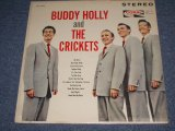 BUDDY HOLLY and THE CRICKETS - BUDDY HOLLY and THE CRICKETS (Ex++/Ex+++)  / 1963 US ORIGINAL on CORAL LABEL STEREO Used LP